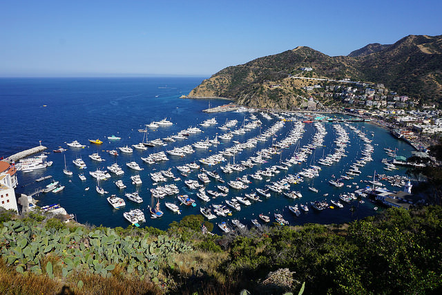 Boat to Catalina Island:10 Things Everyone Should Do In LA Before They Die