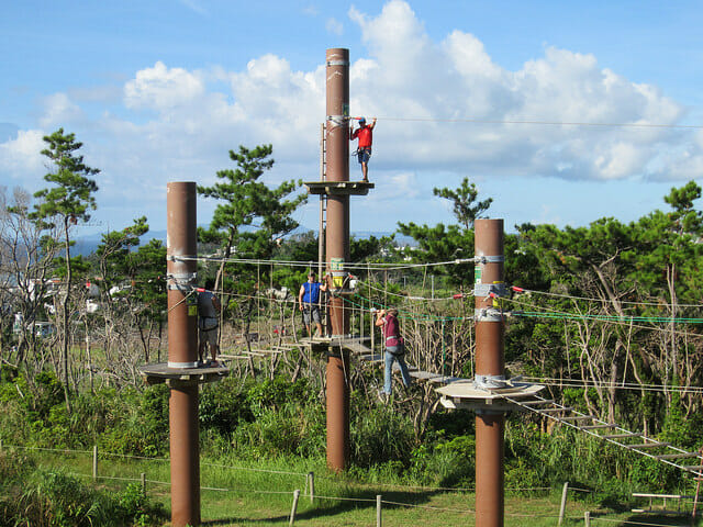 Build trust skills at a ropes course. NYC Team Building Ideas That Don't Suck