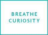 about avital tours core value breathe curiosity
